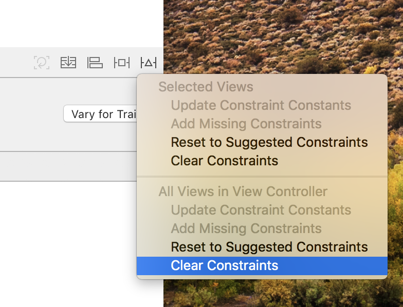 Clear all constraints in view controller