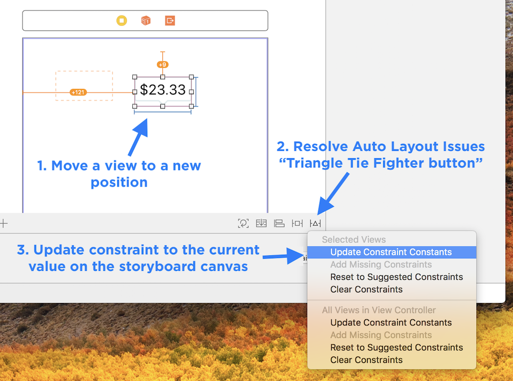 Update Constraint Constants to Force a View to a New Position or Size